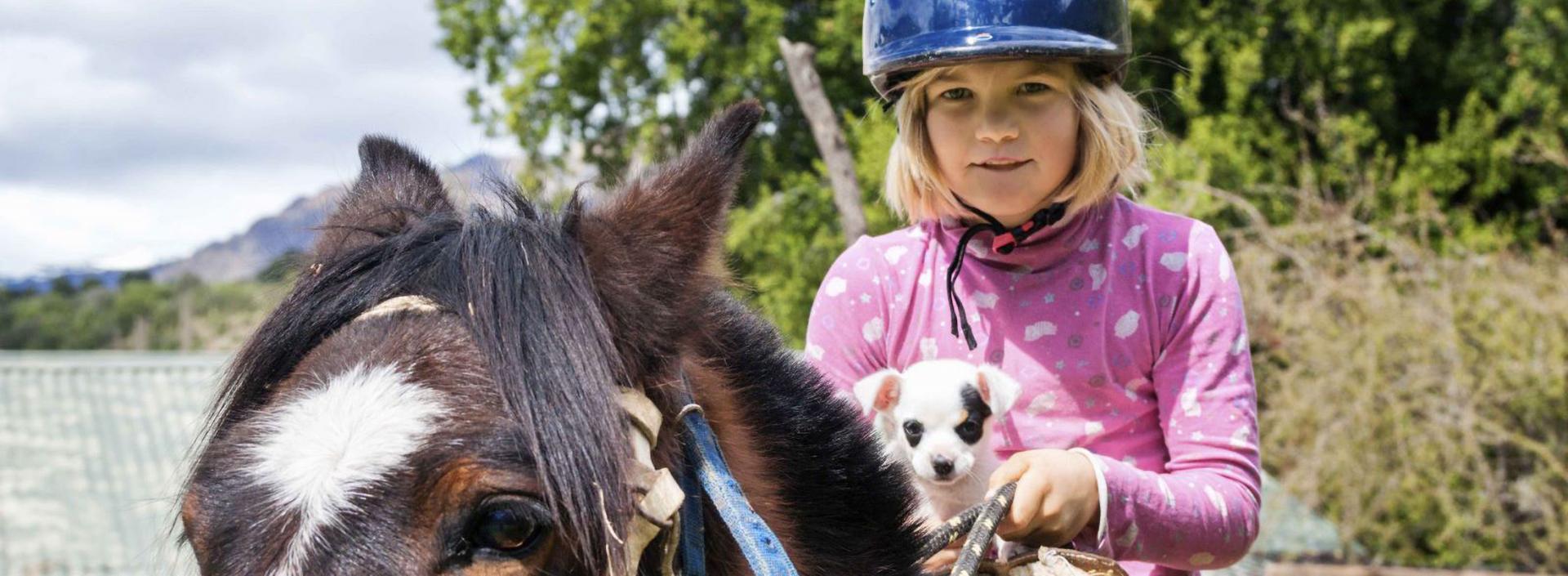 Especialização Avançada em Terapia Assistida por Animais: Cães e Cavalos