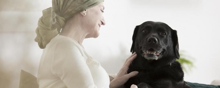 Especialização Avançada em Terapias Assistidas por Animais: da Psicologia à Psicoterapia Instituto CRIAP