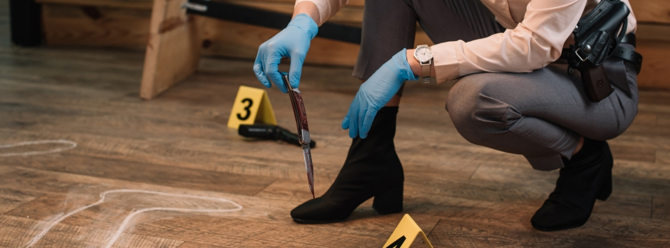 Webinar sobre Inspeção ao local do Crime no Instituto CRIAP