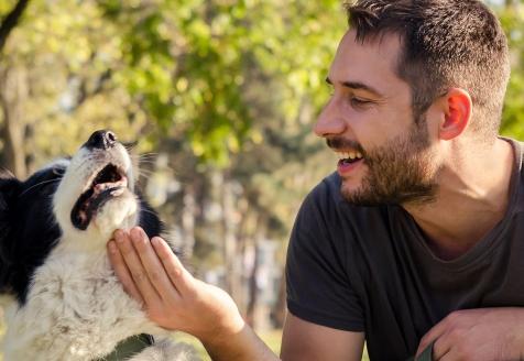 Talk em Intervenção Assistida por Animais: Da Conceção Prática ao Estatuto Jurídico no Instituto CRIAP