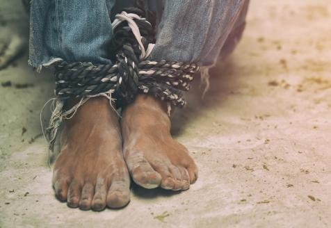 Webinar sobre Tráfico de Seres Humanos em Reflexão no Instituto CRIAP.